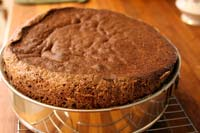 Горько сладкий шоколадный торт